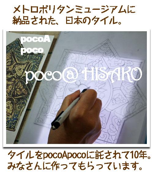 DSCF0223hisa.jpg