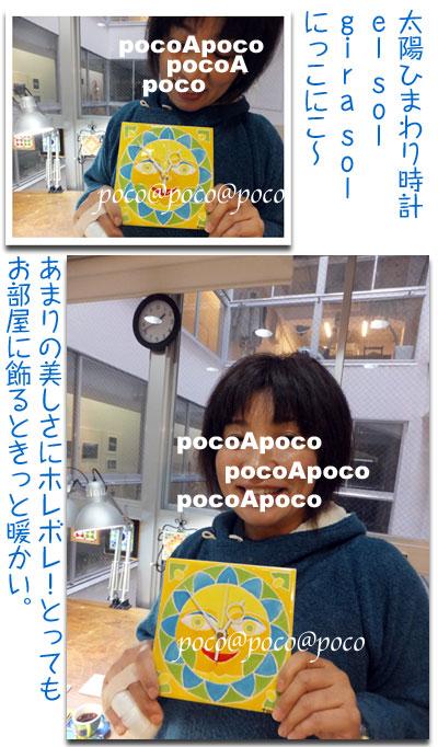 DSCF4677girasor.jpg