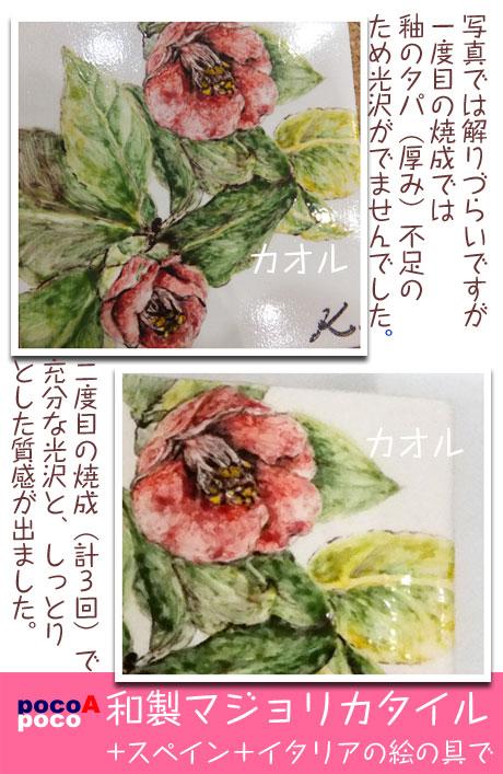 DSCF8081kaoaka2.jpg