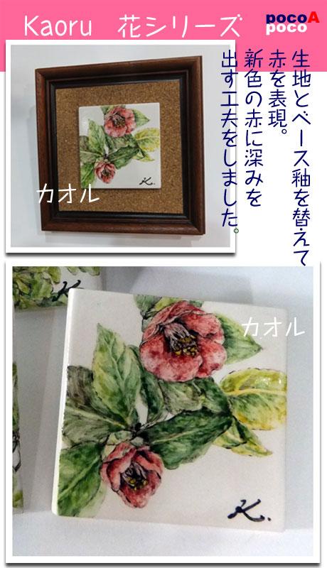 DSCF8491kaoaka.jpg