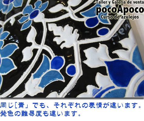IMG_0480ma.jpg